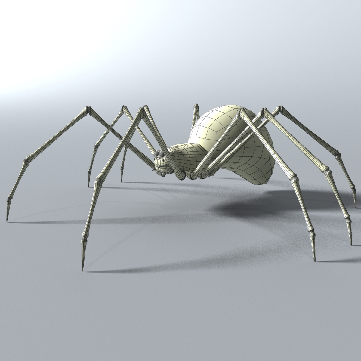 black spider rigged 3d model 3ds max fbx  obj 221110