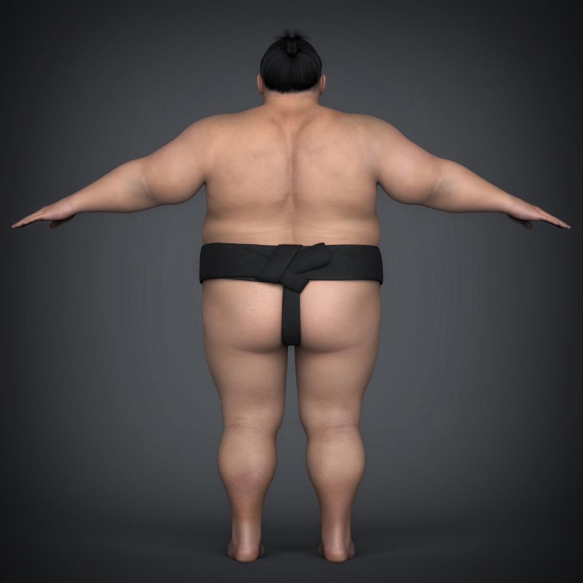 realistic japanese sumo 3d model max fbx c4d ma mb texture obj 221771