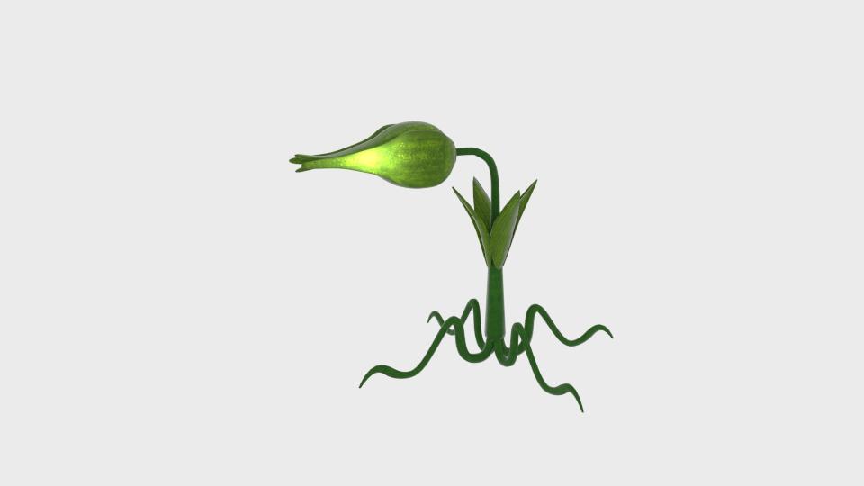 cartoon munch plant 3d model blend 223012
