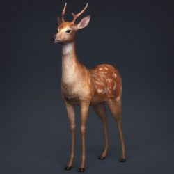 Low Poly Realistic Deer ( 342.31KB jpg by cghuman )