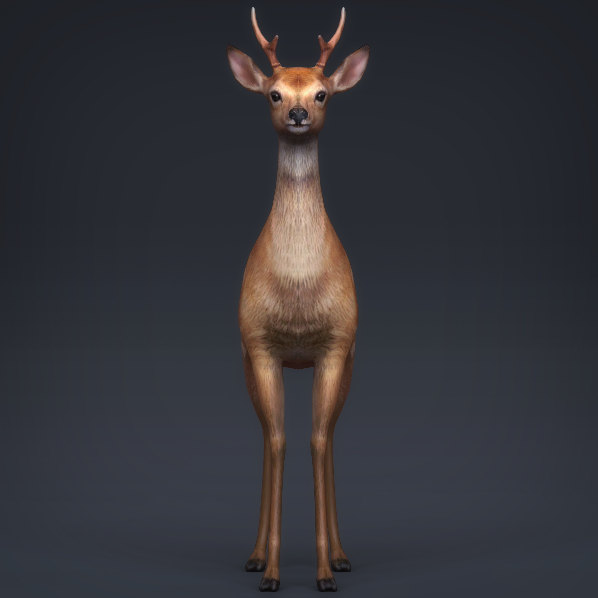 low poly realistic deer 3d model max fbx c4d ma mb obj 223711