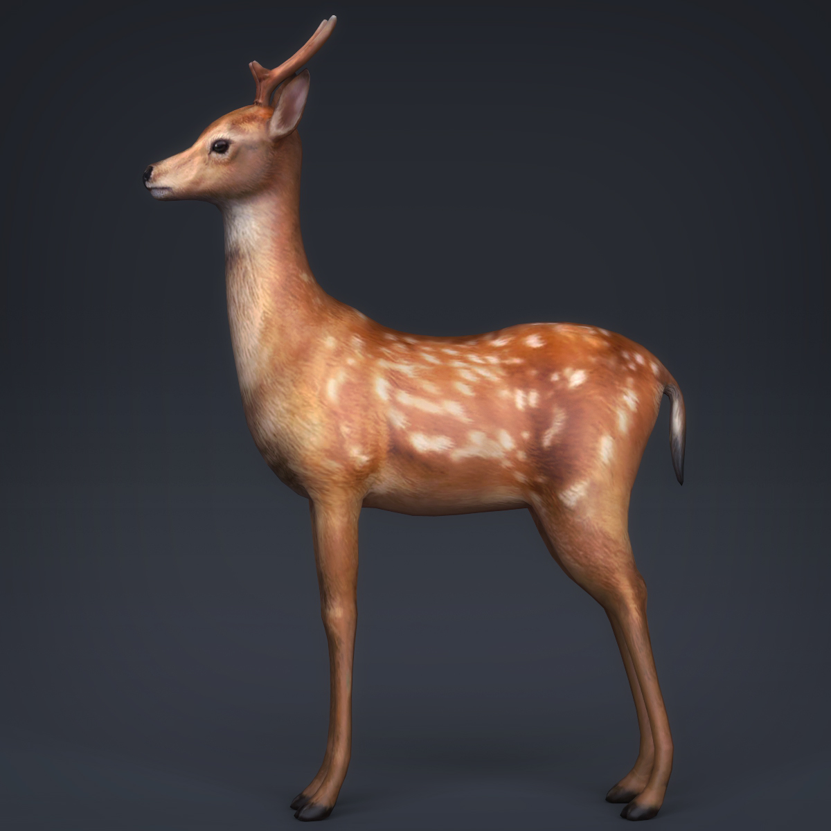 low poly realistic deer 3d model max fbx c4d ma mb obj 223712
