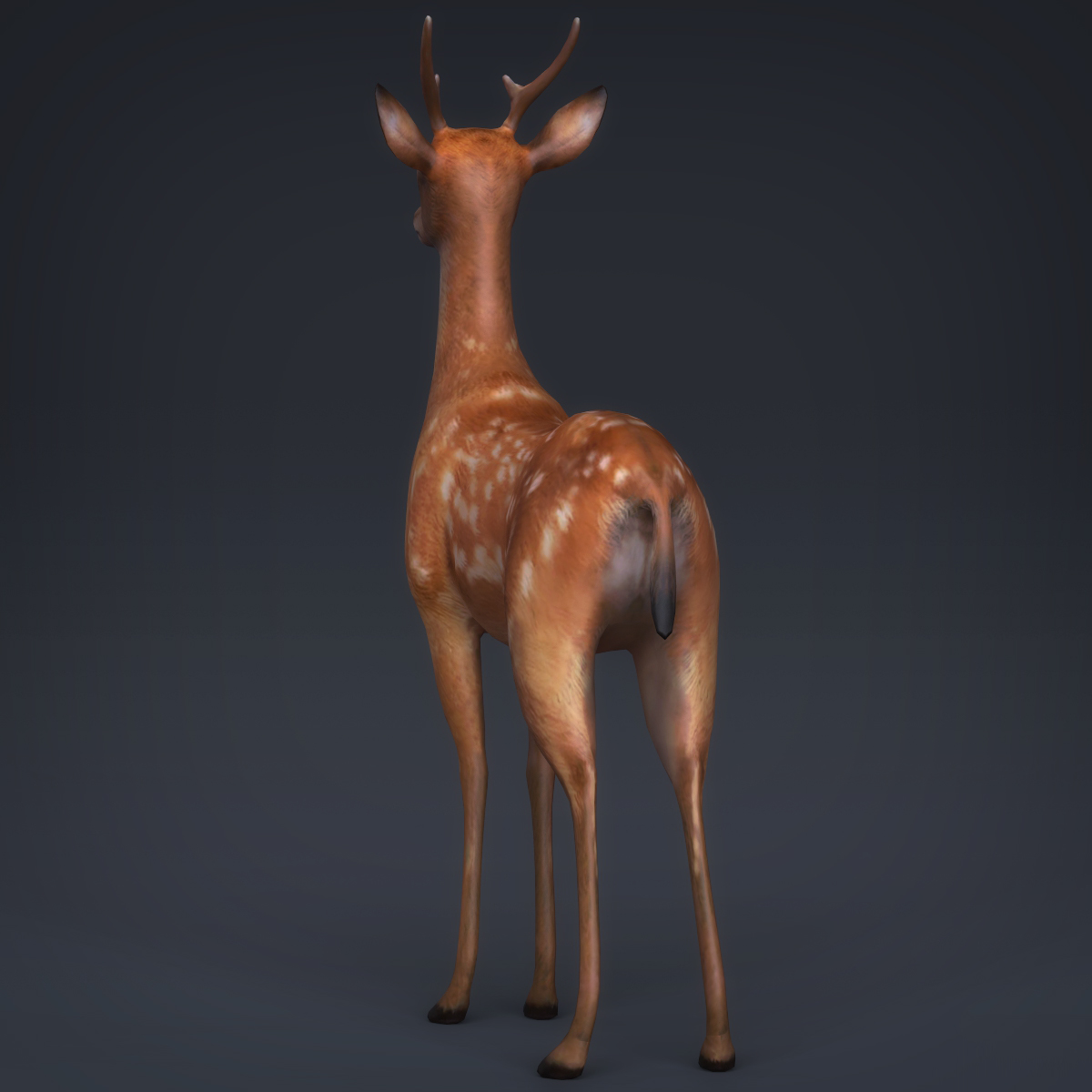 low poly realistic deer 3d model max fbx c4d ma mb obj 223713