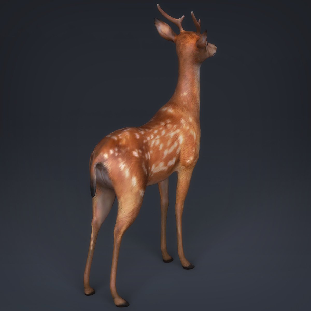 low poly realistic deer 3d model max fbx c4d ma mb obj 223714