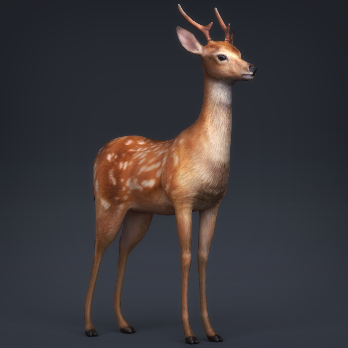 low poly realistic deer 3d model max fbx c4d ma mb obj 223715