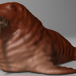 walrus Rigged ( 589.81KB jpg by supercigale )