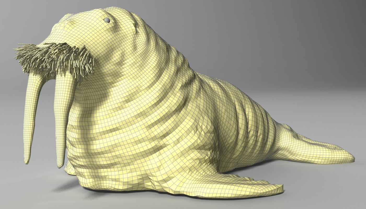walrus rigged 3d model max fbx w3d obj 251979