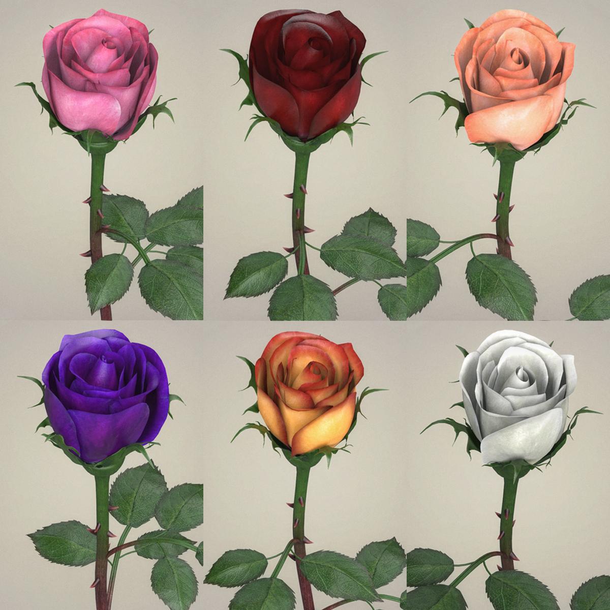 Rose Flower Collection 3d model max fbx c4d ma mb obj 252759
