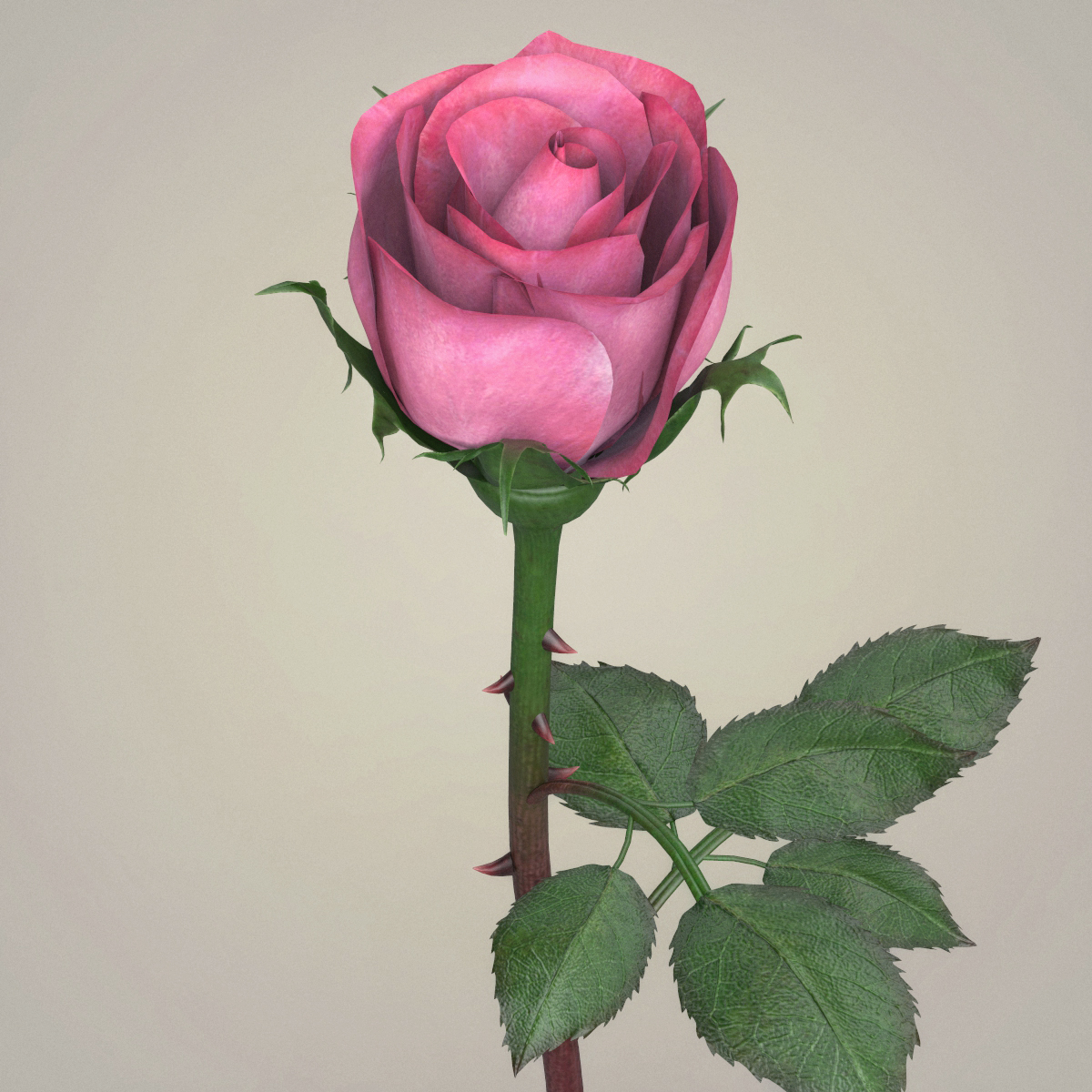 rose flower collection 3d model max fbx c4d ma mb obj 252760