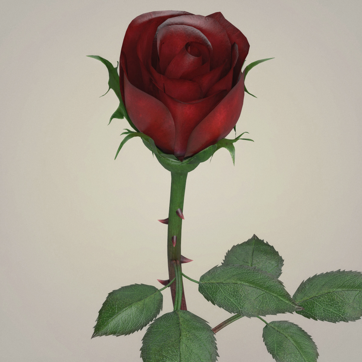 rose flower collection 3d model max fbx c4d ma mb obj 252762