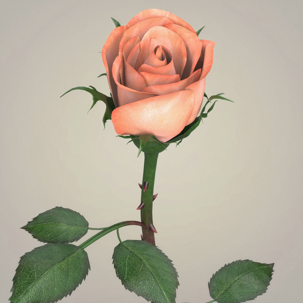 rose flower collection 3d model max fbx c4d ma mb obj 252764