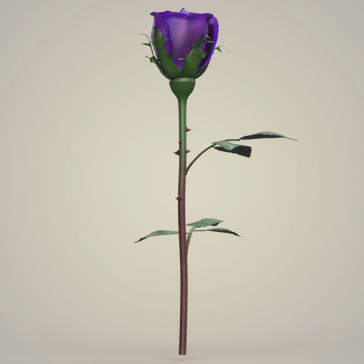rose flower collection 3d model max fbx c4d ma mb obj 252767