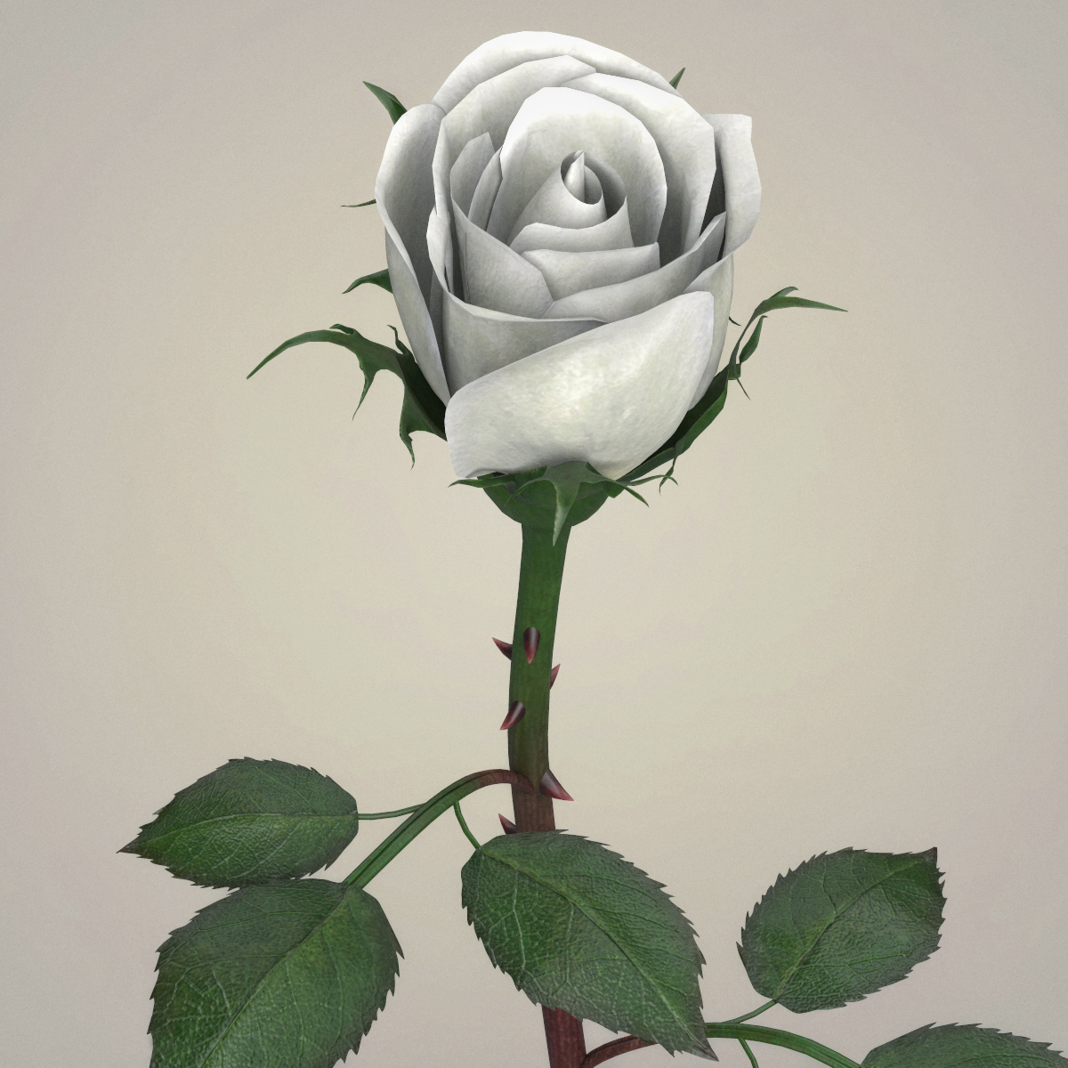 rose flower collection 3d model max fbx c4d ma mb obj 252770