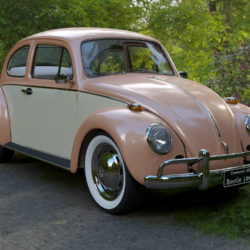 Volkswagen Beetle Fusca 1969 3d model 3d printing high poly render ready