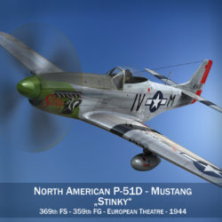 North American P-51D Mustang - Stinky 3d model 0