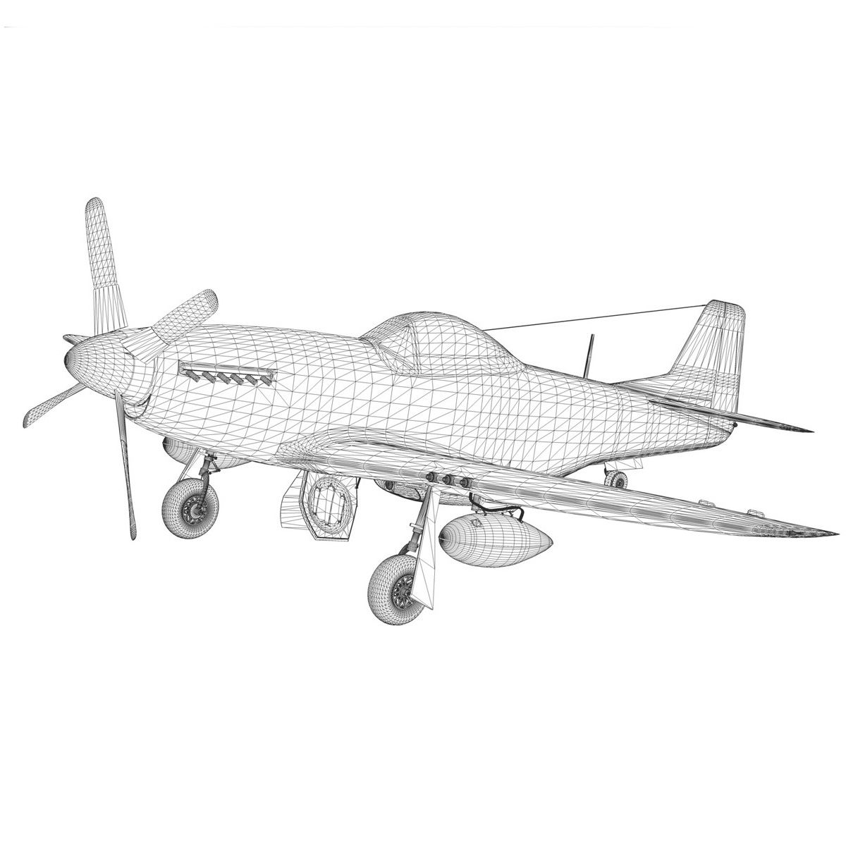 north american p-51d mustang – stinky 3d model fbx c4d lwo obj 269614