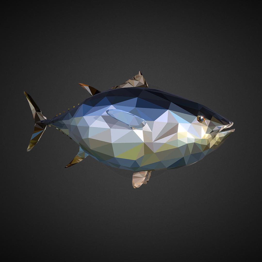 Tuna Low Polygon Art Ocean Fish 3d model 3ds 3ds max plugin fbx ma mb tga targa icb vda vst pix obj 270102
