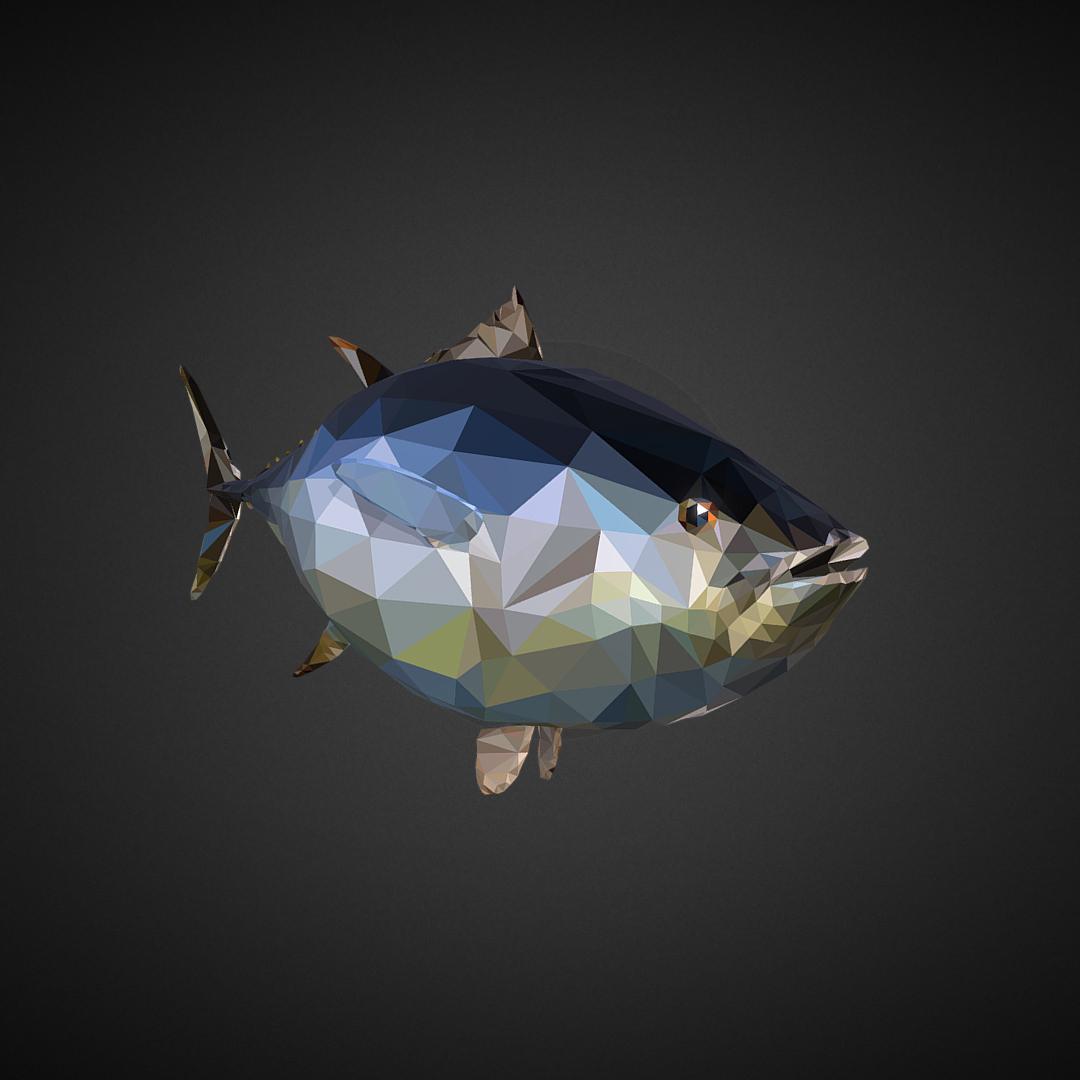 tuna low polygon art ocean fish 3d model 3ds  fbx ma mb tga targa icb vda vst pix obj 270103