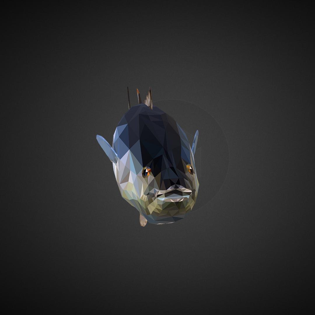 tuna low polygon art ocean fish 3d model 3ds  fbx ma mb tga targa icb vda vst pix obj 270104