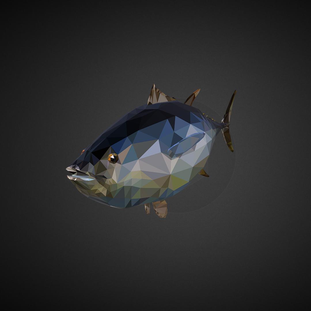tuna low polygon art ocean fish 3d model 3ds  fbx ma mb tga targa icb vda vst pix obj 270105