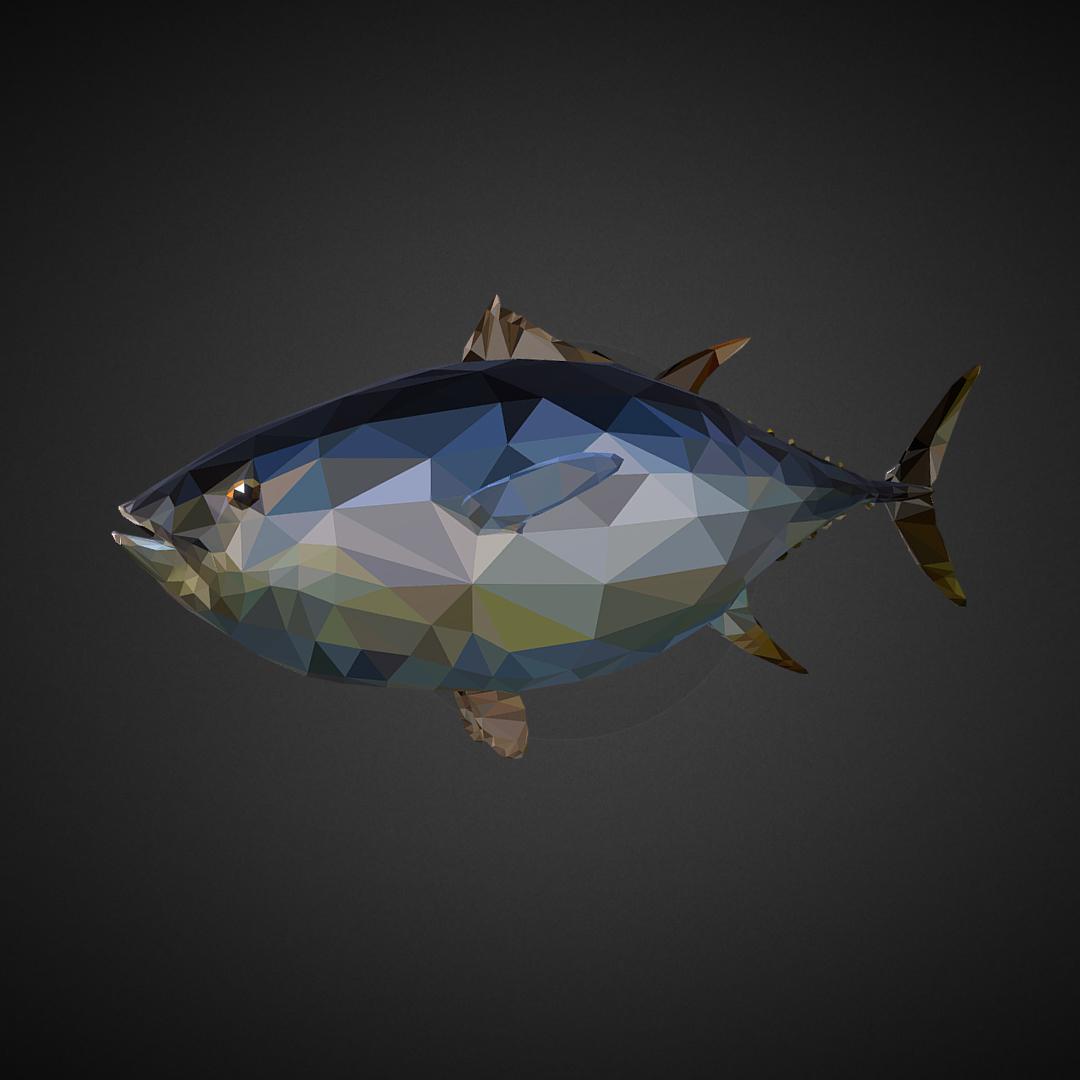 tuna low polygon art ocean fish 3d model 3ds  fbx ma mb tga targa icb vda vst pix obj 270106