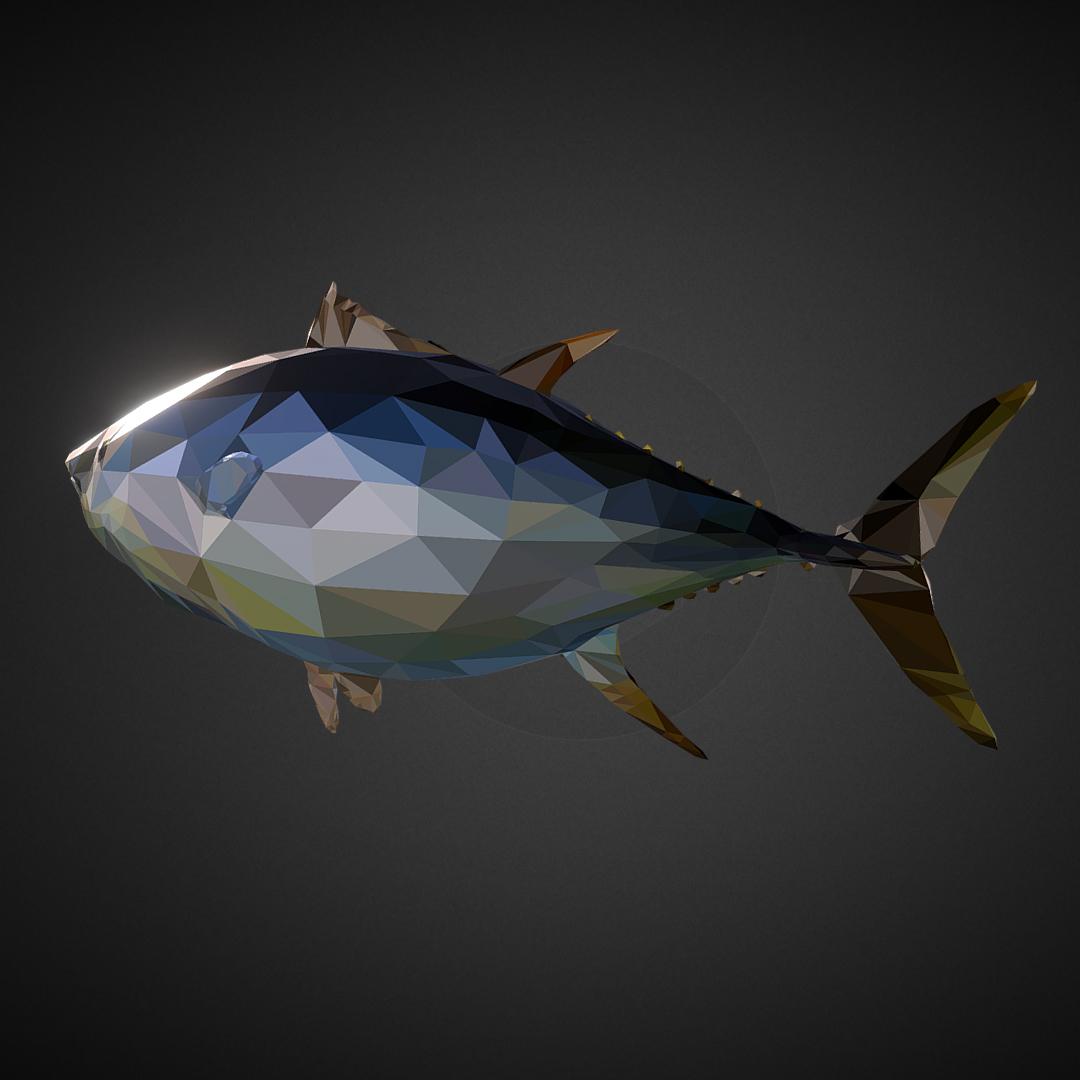 tuna low polygon art ocean fish 3d model 3ds  fbx ma mb tga targa icb vda vst pix obj 270107