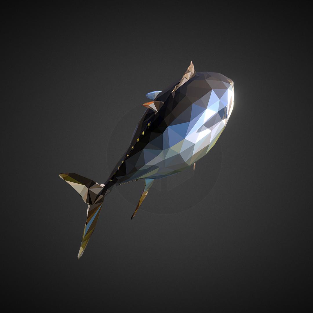 tuna low polygon art ocean fish 3d model 3ds  fbx ma mb tga targa icb vda vst pix obj 270109