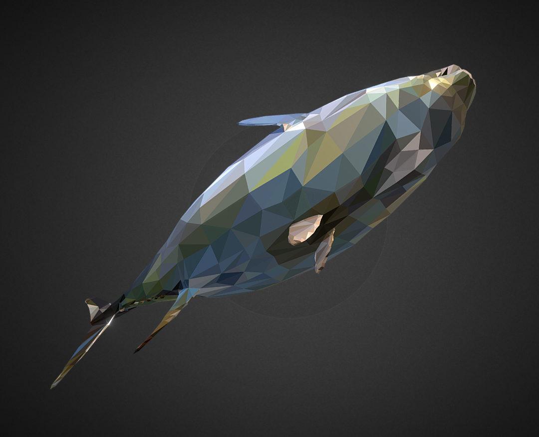 Tuna Low Polygon Art Ocean Fish 3d model 0
