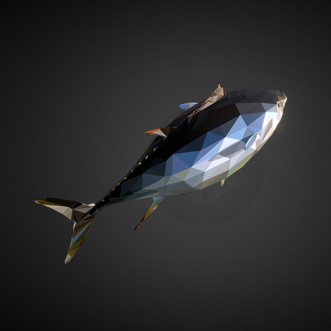 tuna low polygon art ocean fish 3d model 3ds  fbx ma mb tga targa icb vda vst pix obj 270111