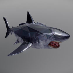 Dark Shark Low Polygon Art Ocean Fish 3D model 3d model 0