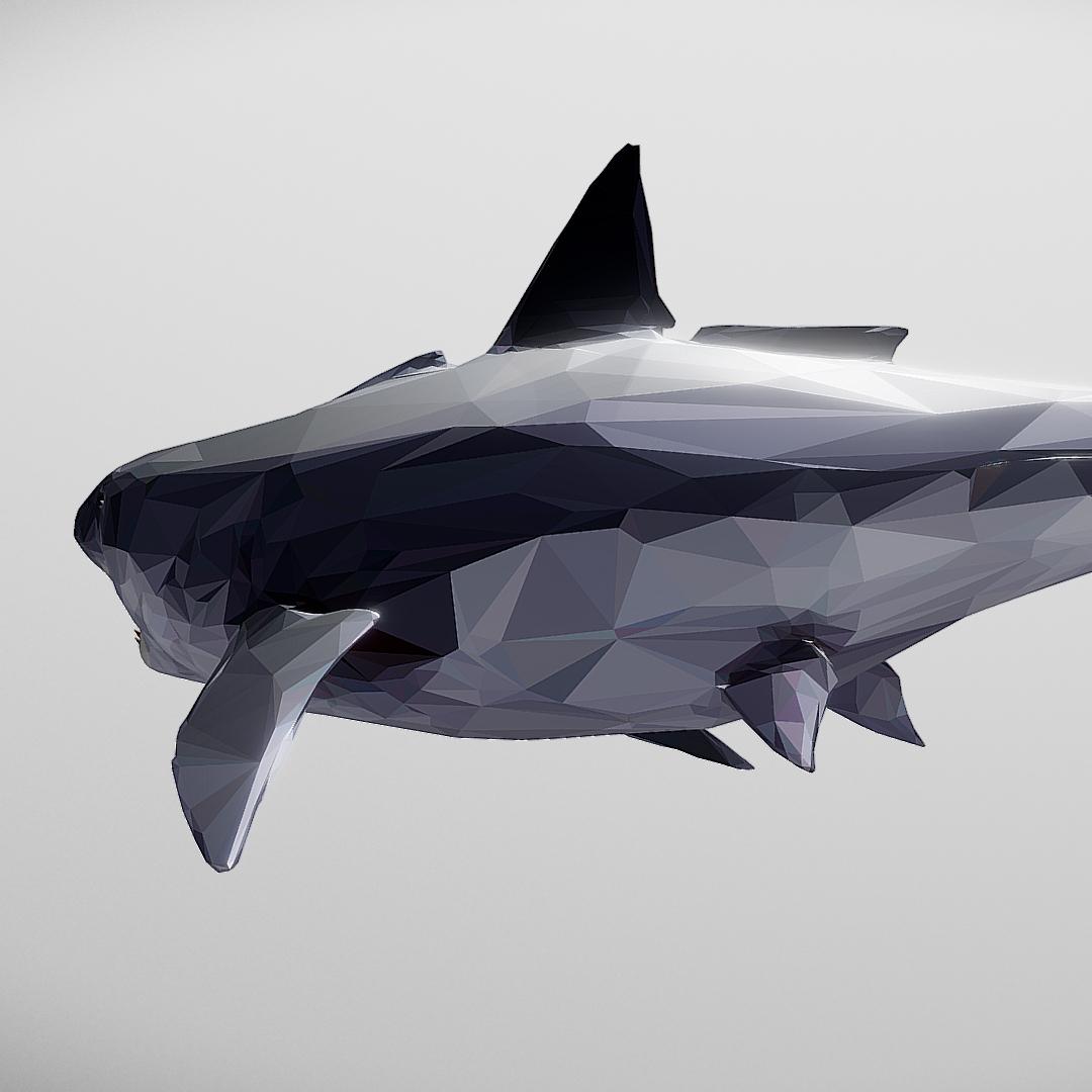 dark shark low polygon 3d model 3ds max fbx ma mb tga targa icb vda vst pix obj 270314