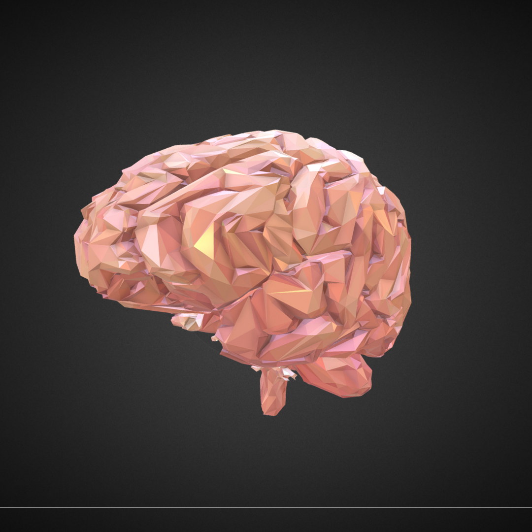 Low Polygon Art Medical Brain Real VR AR low-poly 3d model max 270533