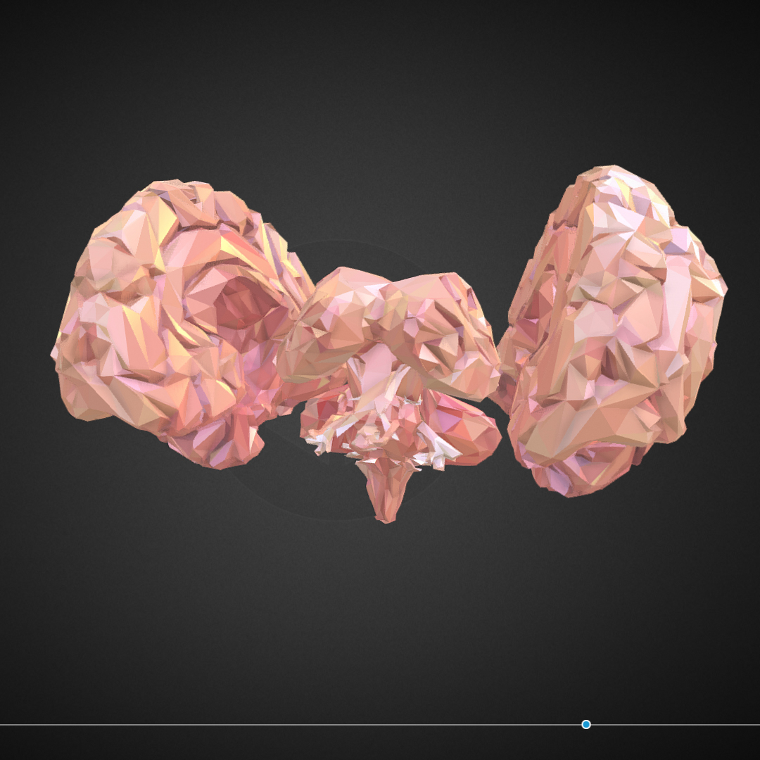 Low Polygon Art Medical Brain Real VR AR low-poly 3d model max 270535