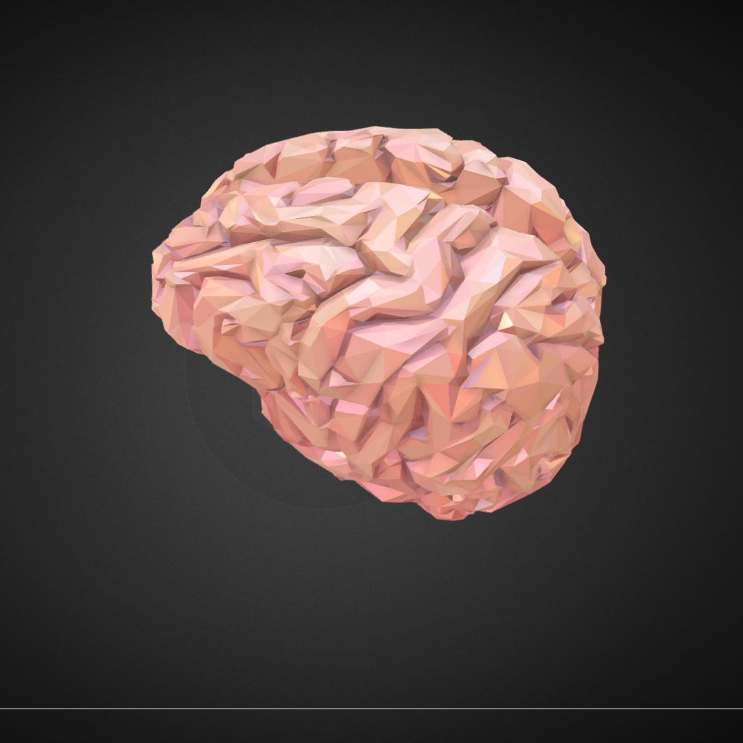 Low Polygon Art Medical Brain Real VR AR low-poly 3D Model – Buy Low ...