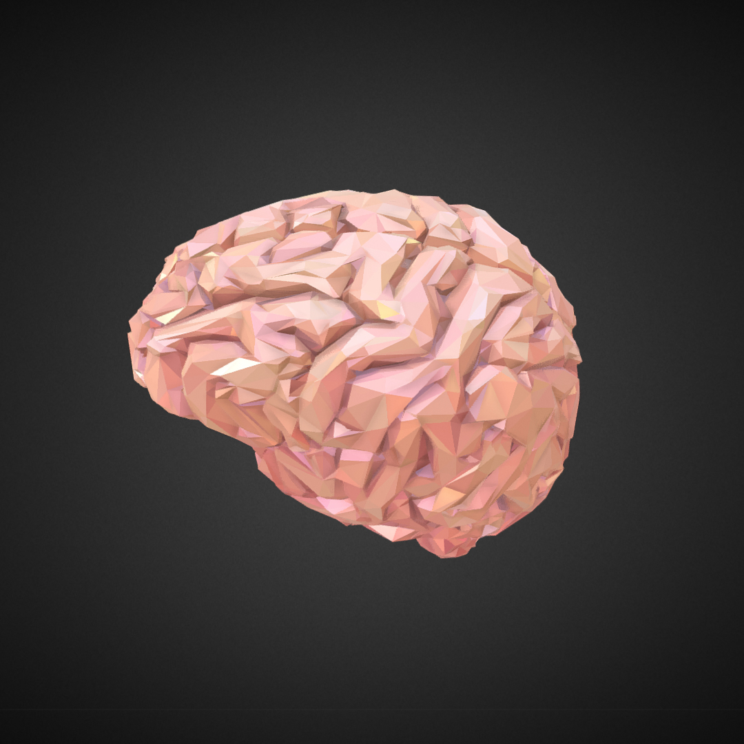Low Polygon Art Medical Brain Real VR AR low-poly 3d model max 270539