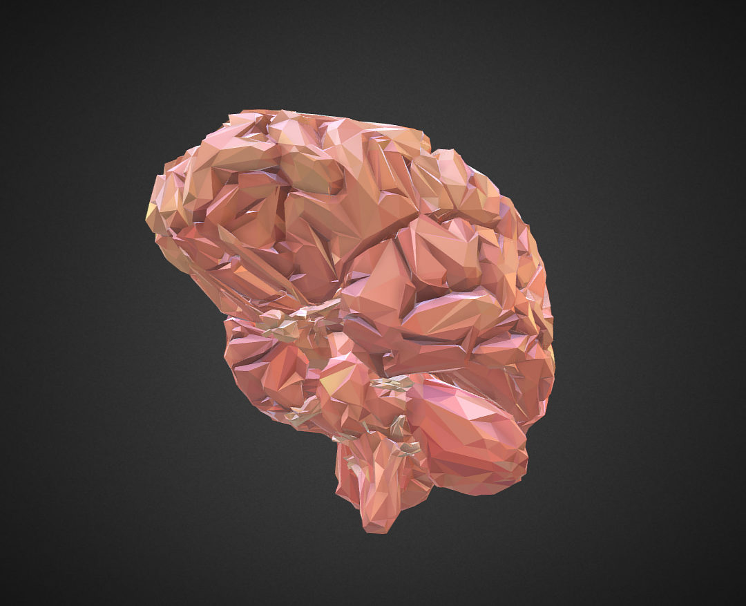 Low Polygon Art Medical Brain Real VR AR low-poly 3d model 0