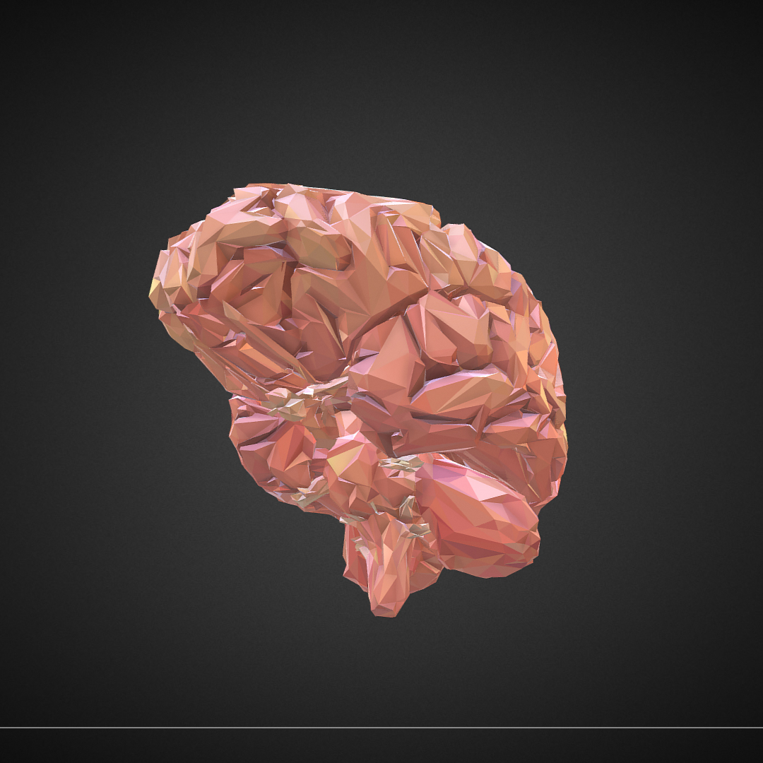Low Polygon Art Medical Brain Real VR AR low-poly 3d model max 270542