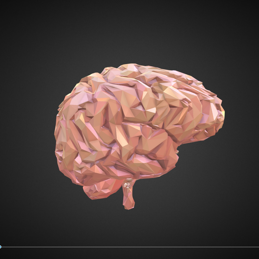 Low Polygon Art Medical Brain Real VR AR low-poly 3d model max 270545