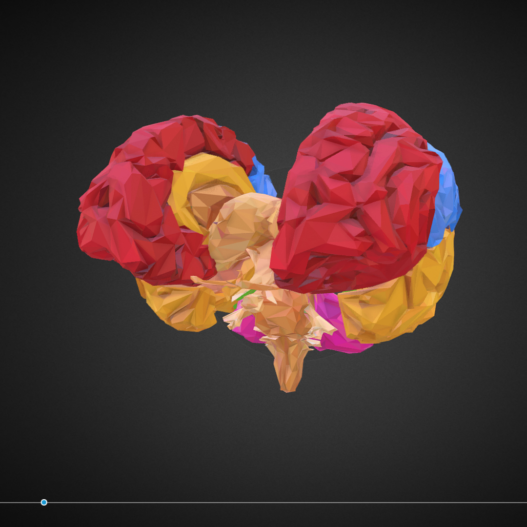 low polygon art medical brain color 3d model 3ds 270555