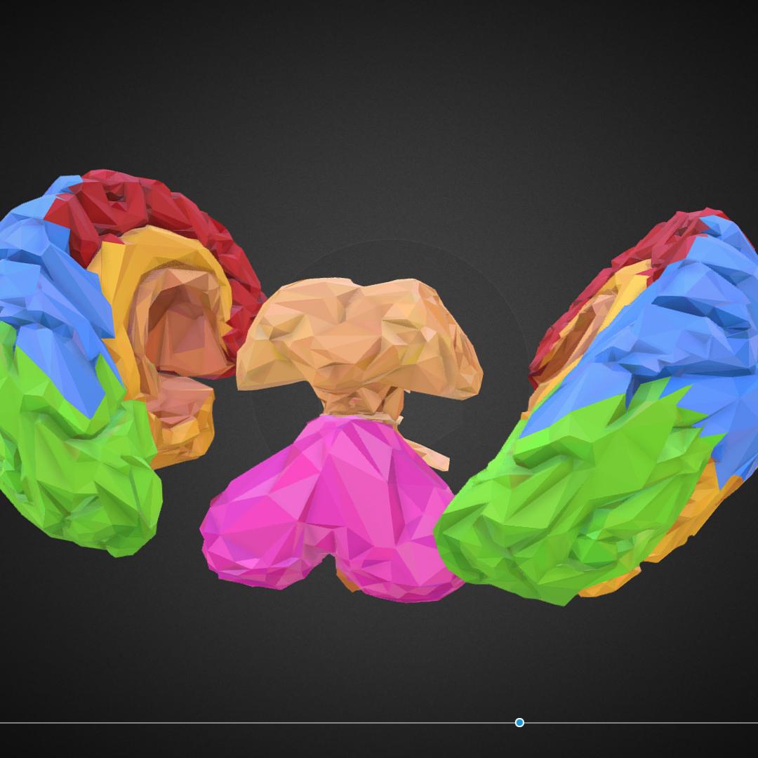 low polygon art medical brain color 3d model 3ds 270561