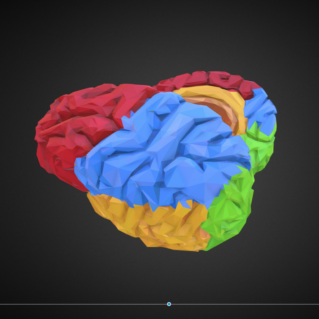 low polygon art medical brain color 3d model 3ds 270571
