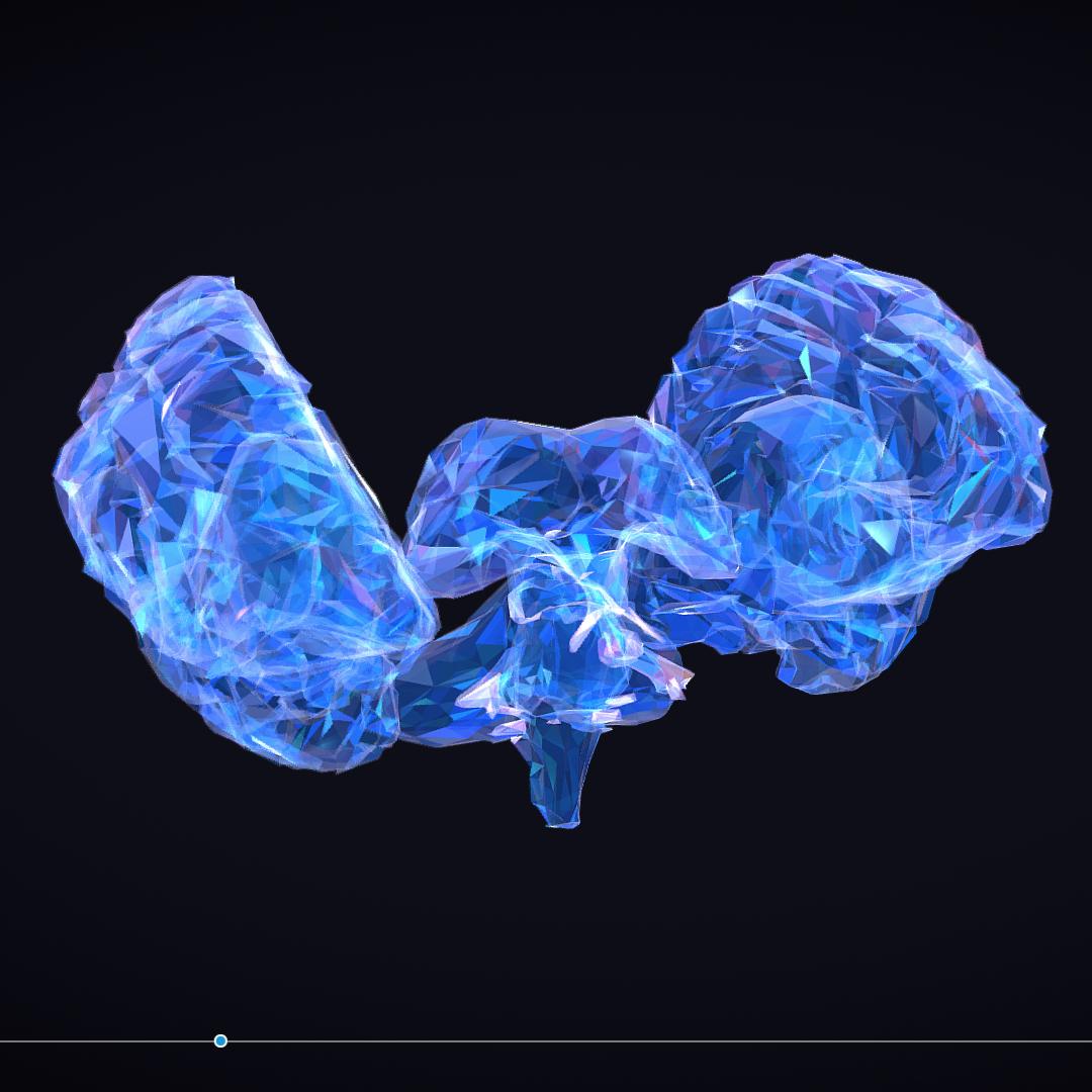Low Polygon Art Medical Brain Roentgen 3d model 3ds 270586