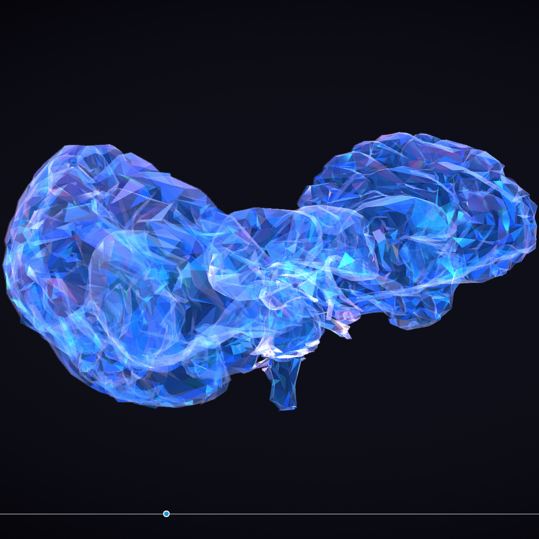 Low Polygon Art Medical Brain Roentgen 3d model 3ds 270587