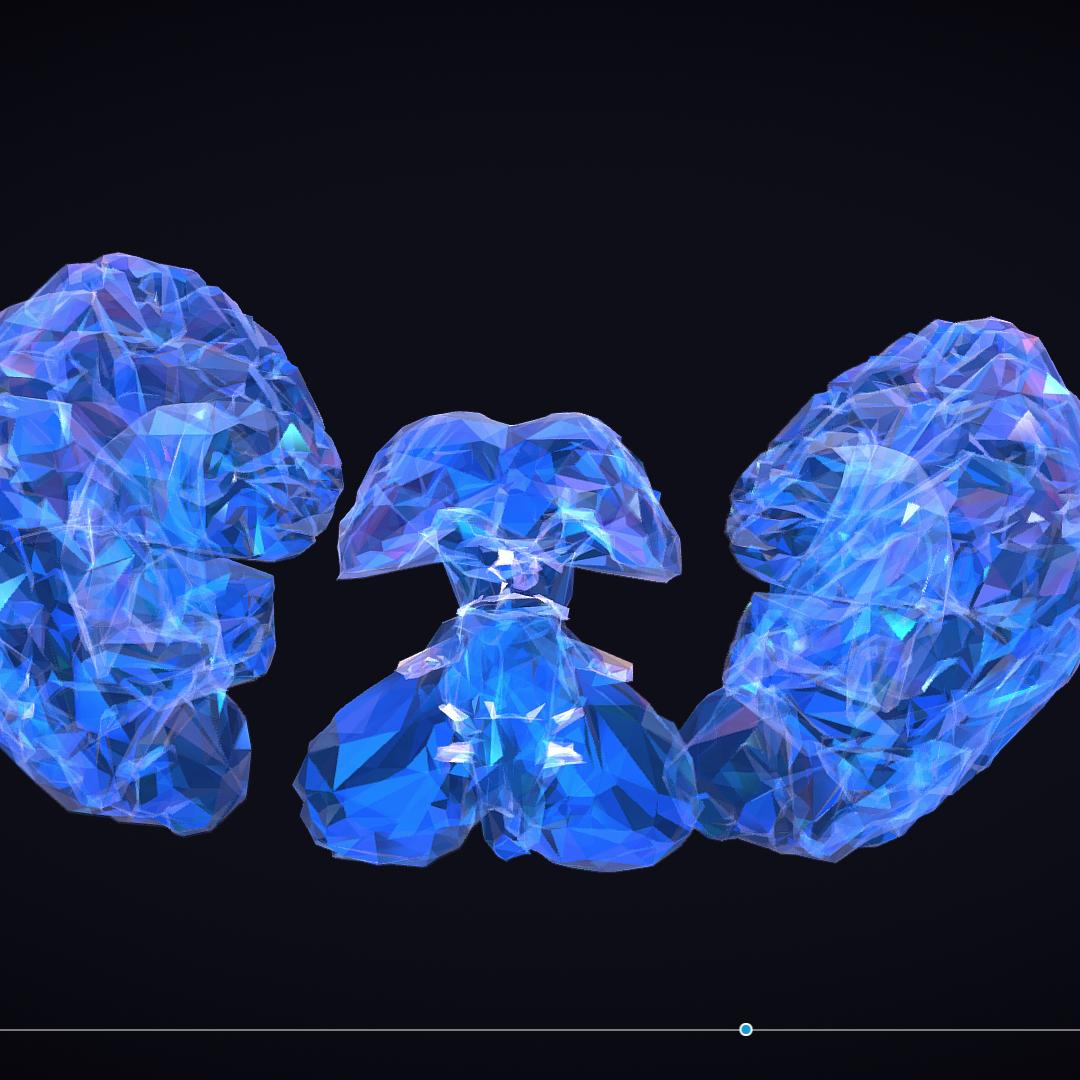 Low Polygon Art Medical Brain Roentgen 3d model 3ds 270593
