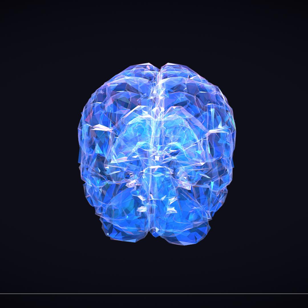Low Polygon Art Medical Brain Roentgen 3d model 3ds 270604