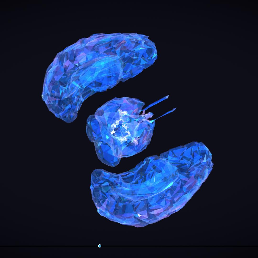 Low Polygon Art Medical Brain Roentgen 3d model 3ds 270610