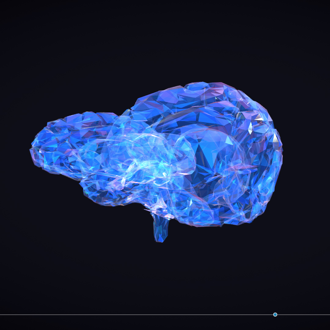 Low Polygon Art Medical Brain Roentgen 3d model 3ds 270612