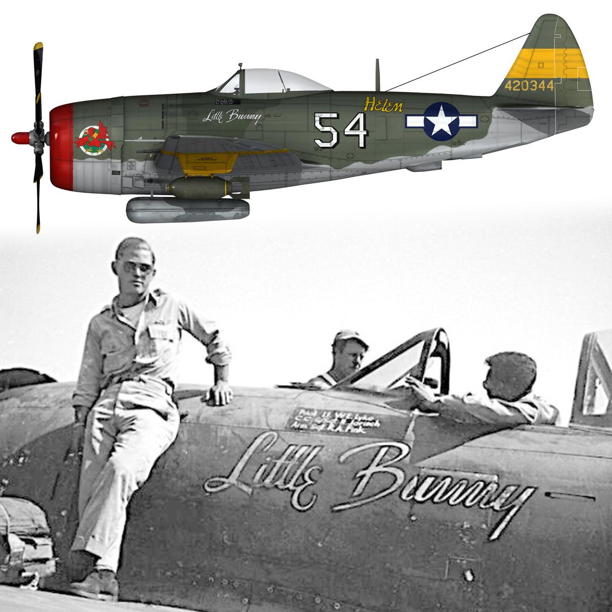 republic p-47d thunderbolt – little bunny 3d model fbx c4d lwo obj 274238