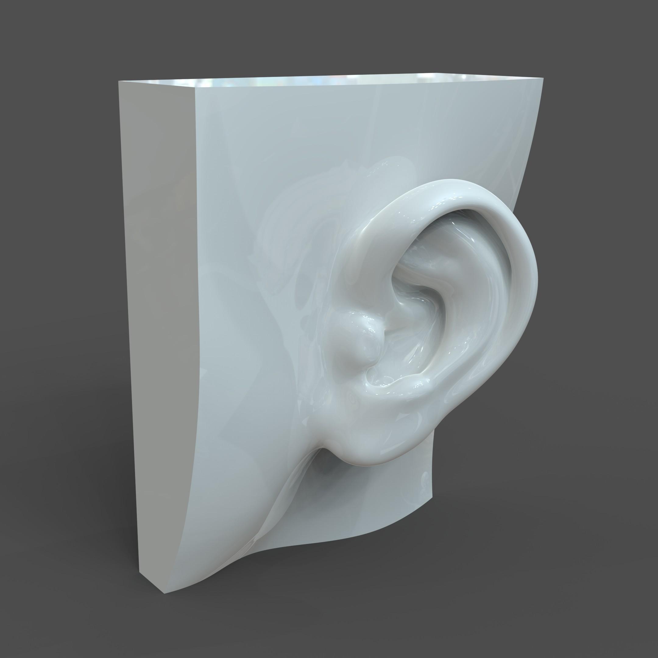 CAD-friendly Casual Woman Ear Model F1P1D0V1ear 3d model dwg ige igs iges   obj 277843