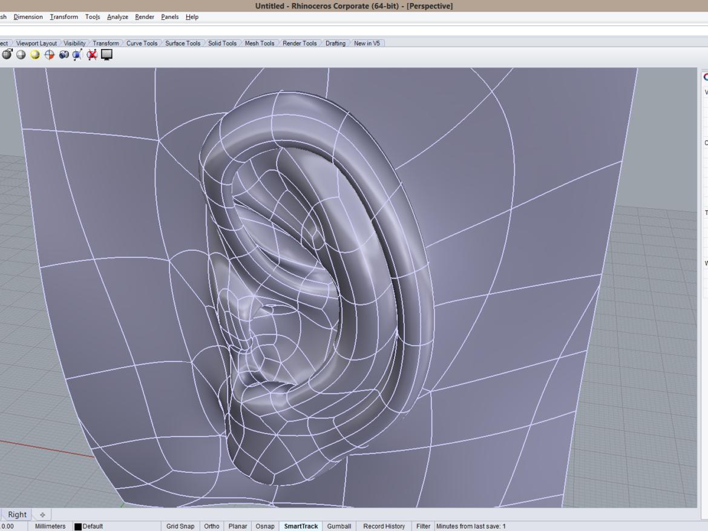CAD-friendly Casual Woman Ear Model F1P1D0V1ear 3d model 3d printing dwg ige igs iges   obj